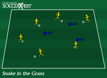 Soccer Drill Diagram: Snake in the Grass Soccer Game